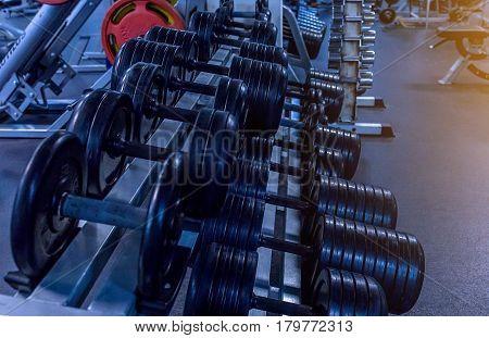 dumbbells on rack In the fitness center