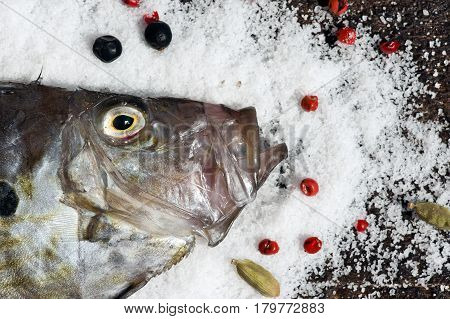 still life with Zeus Faber fish and spices on  on salt  (also known as John Dory gallo Pedro Saint Peter´s fish)