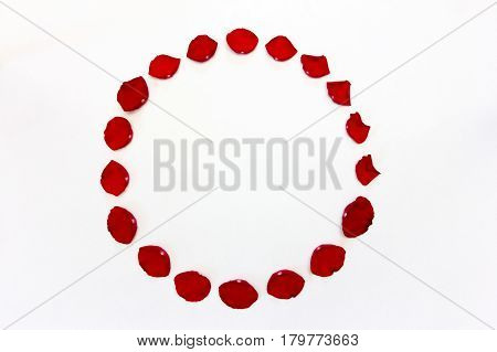 round frame of red rose petals on white background with space for text. the view from the top