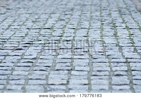 Paving stone gray road lined with brick in the park