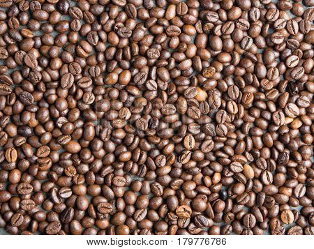 Roasted coffee beans background captured from top view with sharp focus