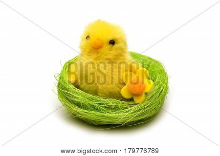 Cute Easter chick in nest - isolated on white