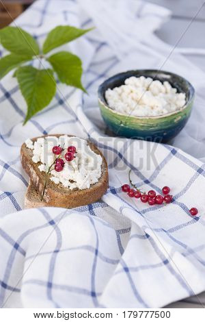 Organic Farming Cottage cheese in a green bowl slice of whole wheat bread with Homemade Ricotta cheese served with red currant on wooden board on linen fabric