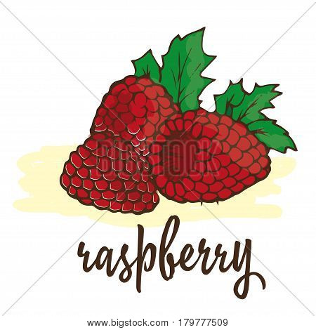 raspberry is hand-painted in a very simple circuit and strokes