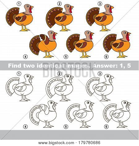 The educational kid matching game for preschool kids with easy gaming level, he task is to find similar objects, to compare items and find two same Beautiful Turkeys