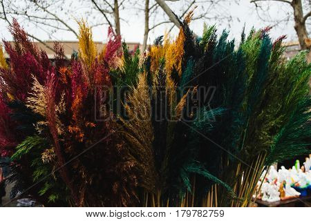 Photo of the Traditional easter and palm sunday market in Yerevan. Rainbow reed. Diversity concept.