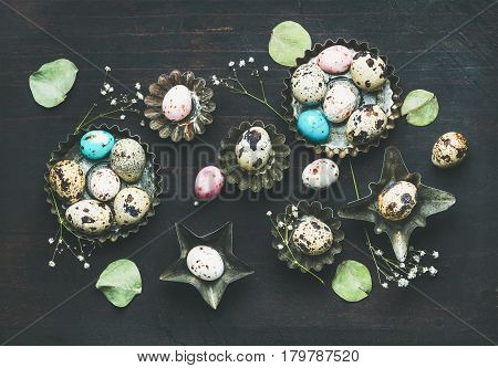 Colorful painted quail eggs in metal molds, dried wild flowers and leaves for Easter holiday over dark scorched wooden background, top view, horizontal composition