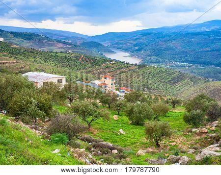 Rural Landscape In Valley Zarga River In Jordan
