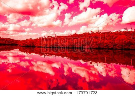 A red color enhanced landscape with reflections of trees and clouds in a river