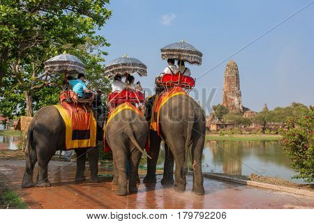 Ayutthaya, Thailand - March 3, 2017: Tourists on the elephants ride tour of the ancient city in Ayutthaya, Thailand