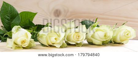 Many white roses lie on a wooden table