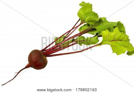 Beets with tops isolated on white background