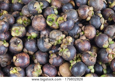 Mangostin - fruit on appearance looks as pomegranate, it is covered with a thick crust of violet color. Under a peel there is a white pulp consisting of 8 segments.