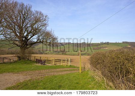 Yorkshire Wolds Scenery In Springtime