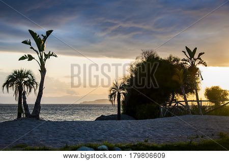 Beautiful sunset landscape on the tropical beach with palms in sardegna italy