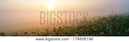 Panorama of summer morning fog in the hills meadow landscape.