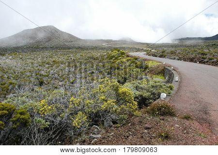 Road To Piton De La Fournaise Volcano On La Reunion