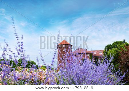 Wawel Castle with flowers in the foreground and the background of Sandomierz Watchtower and former barracks. Krakow, Poland