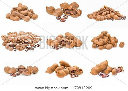 Collection of Tamarindus indica over a white background