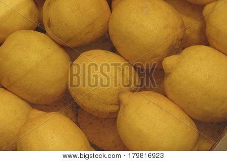 Citron Citrus Fruit Food