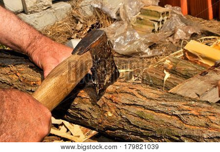 Scraping wood during the beautiful spring sunny day