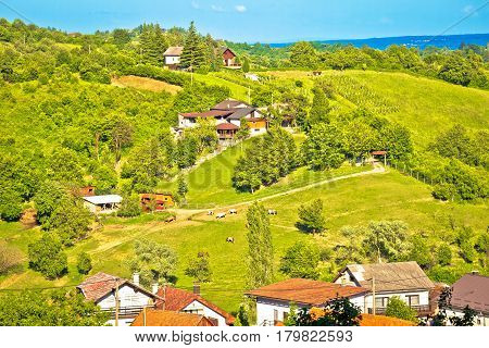 Picturesque Green Hills Of Plesivica View