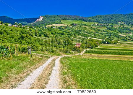 Country Road In Kalnik Mountain Landscape