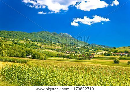 Idyllic Green Landscape Of Kalnik Mountain