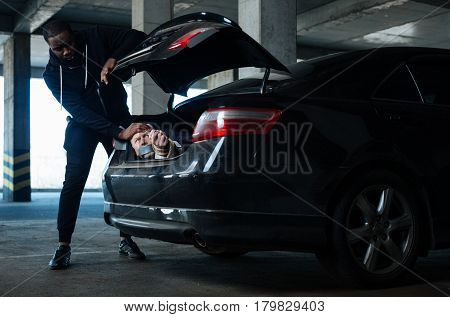 Danger everywhere. Serious strong afro American man standing in front of the car boot and putting a person there while kidnapping him
