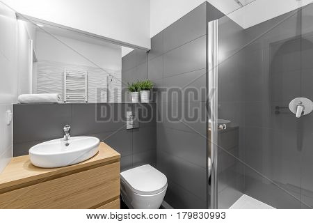 Modern Grey Bathroom With Shower
