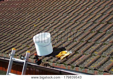 Dirty roof tiles with dense moss and gutter with leaves requiring cleaning ladder ready to work