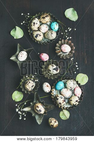 Colorful painted quail eggs in metal molds, dried wild flowers and leaves for Easter holiday over dark scorched wooden table background, top view
