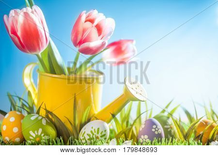 Easter holiday with tulip flowers and egg in grass. Studio shot