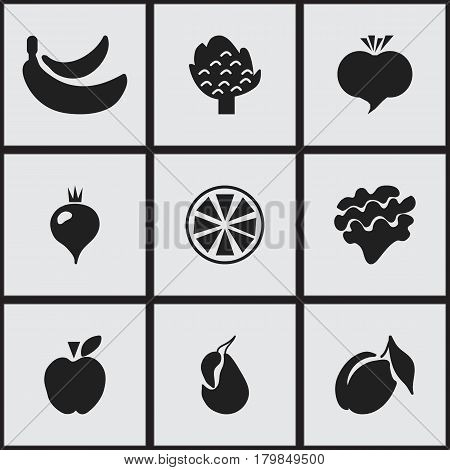 Set Of 9 Editable Berry Icons. Includes Symbols Such As Lettuce, Apricot, Radish And More. Can Be Used For Web, Mobile, UI And Infographic Design.