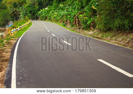 Highway in the jungle. Grey asphalt road and green roadside. Travelling in tropical island. Empty road in exotic nature. Green palm trees and blooming tropical nature. Motorbike or car summer trip