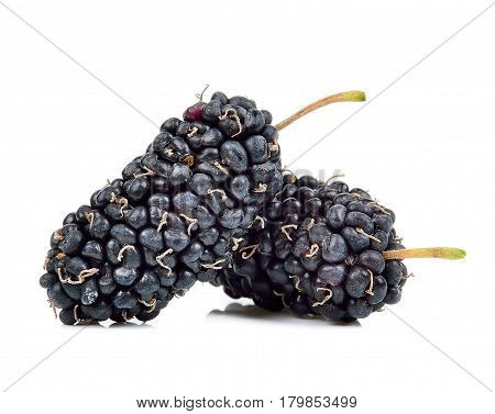 Mulberry Isolated On The White Background