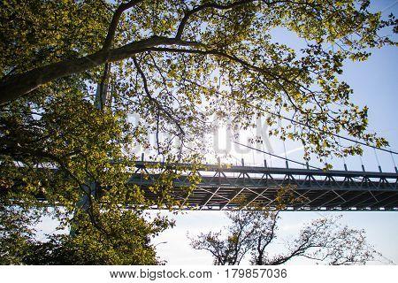 Triborough bridge behind the tree with sunlight, Astoria park, New York