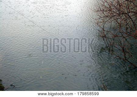 rain drops falling on water during a rainstorm