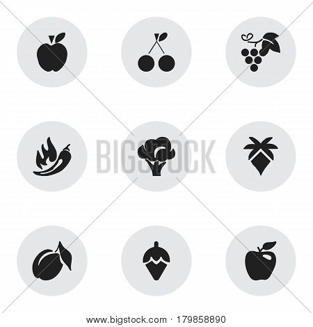 Set Of 9 Editable Berry Icons. Includes Symbols Such As Jonagold, Palm, Merlot And More. Can Be Used For Web, Mobile, UI And Infographic Design.
