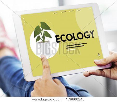 Ecology Environment Green Natural Plants