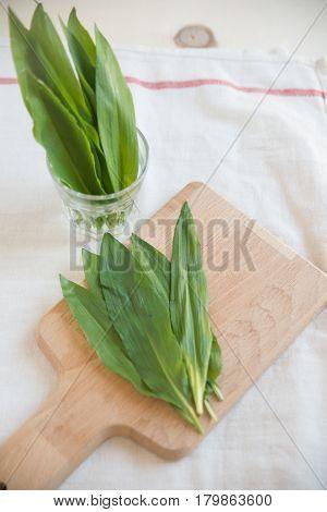 wild garlic, known as ramsons, buckrams, wild garlic, broad-leaved garlic, wood garlic, bear leek or bear's garlic