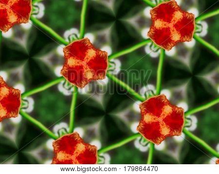 Abstract Mandala Background Flowers