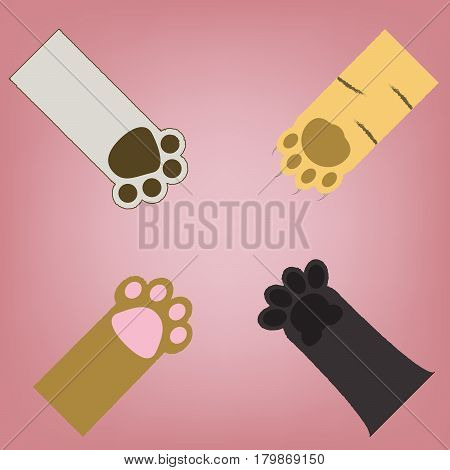 abstract 4 type of cat paws on pink vintage background