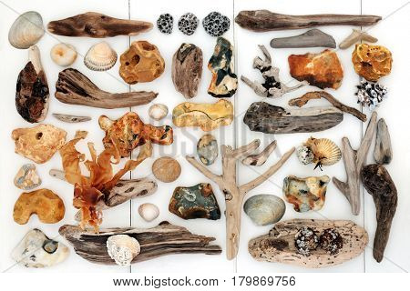 Beach art abstract design with driftwood, seashells, rocks and seaweed on white wood background.