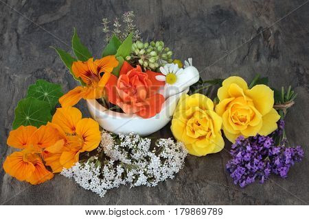 Natural herbal alternative medicine selection with valerian, angelica, nasturtium, lavender, thyme and rose flowers.