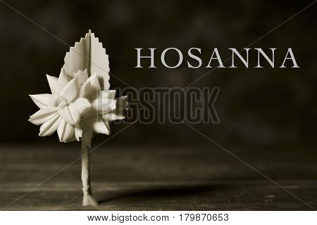closeup of a small traditional spanish braided palm to be blessed on Palm Sunday on a rustic wooden surface and the word hosanna