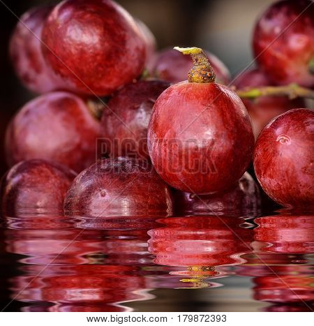 close up single Red grapes with reflection in water