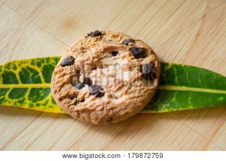 Top View Of Chocolate Chips Cookie stock photo