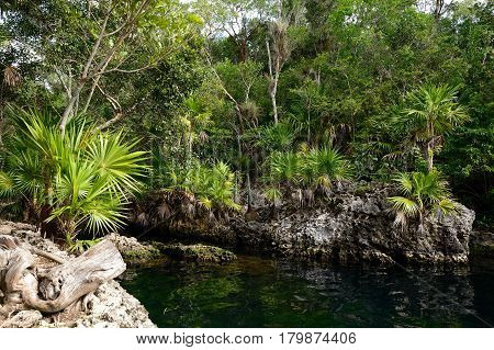 Cueva de los Peces it is a 70m-deep cenote on the south coast of Cuba near Giron beach
