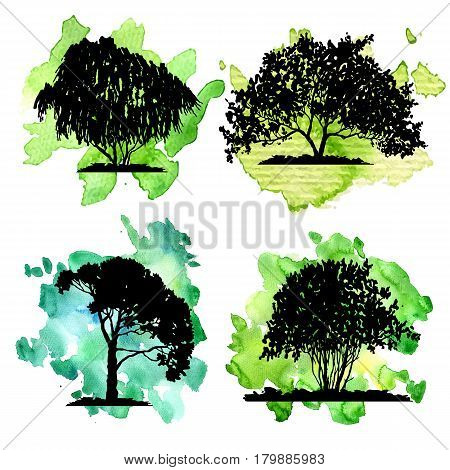 vector set of deciduous trees at green watercolor background, hand drawn isolated natural elements